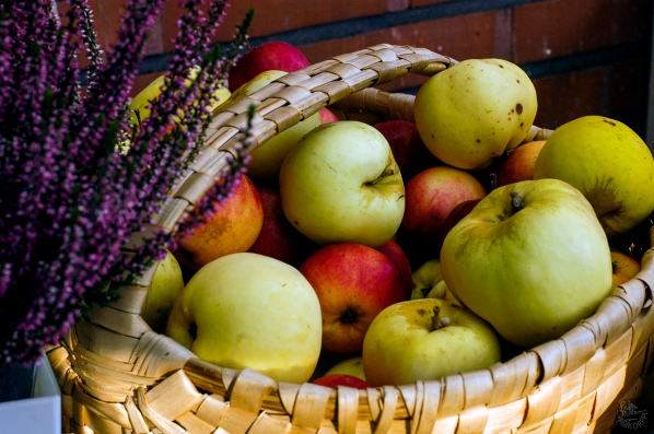 waiting_apples_4684p